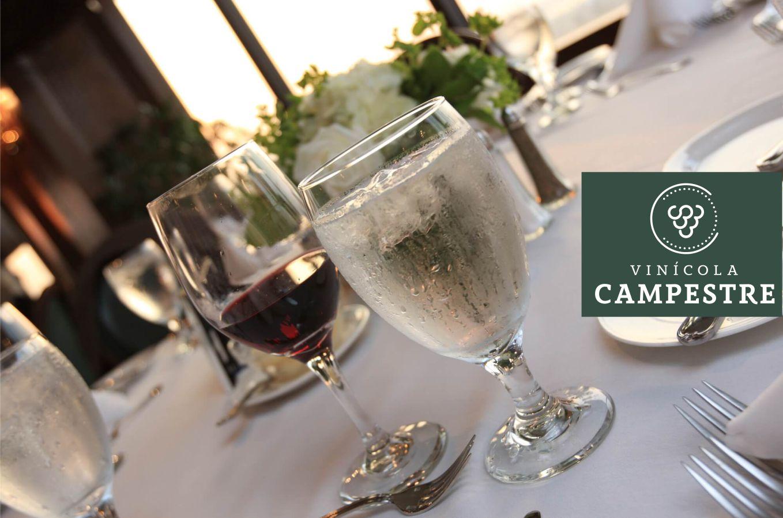 ac5c66d18 Taça de vinho e água  entenda por que aparecem juntas - Vinícola ...